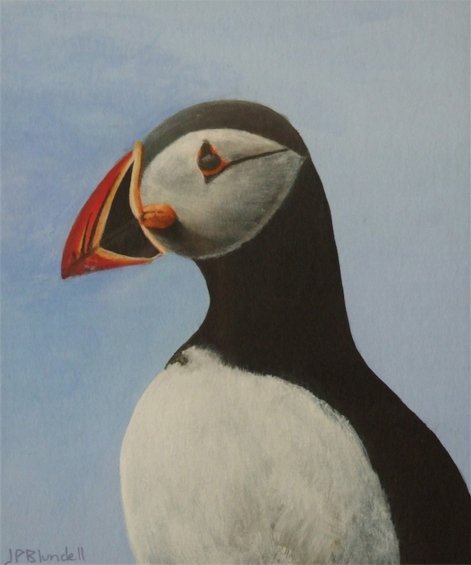 Puffin (Private collection)